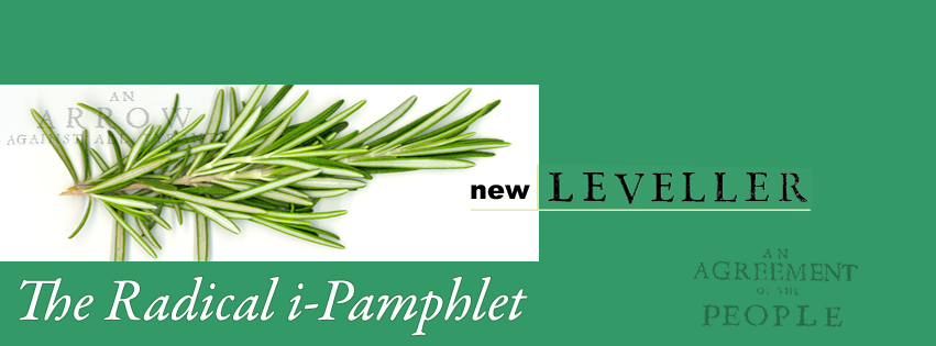 The New Leveller Blog